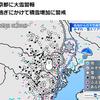 東京の『大雪』は人工雪だから気をつけよう(花粉症編・完)