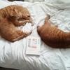 猫の気持ち解剖図鑑