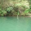 ブラックバス釣行記 相模湖 2011年5月3日