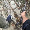 ほぼほぼ初心者が石鎚山にソロで登ってきたよ