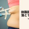 体脂肪を落とすために