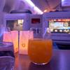 Turkish Airlines(ターキッシュ航空)TK52(イスタンブール → 東京成田)ビジネスクラス搭乗記