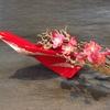 【水曜恒例商品情報】花器作家の1点物ベース「特別展示即売会」開催中!