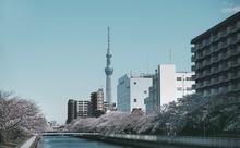 日本語教育推進法案が衆議院本会議を通過