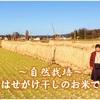 当農園の【お米の体験談】