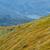 姥ヶ岳山頂へ