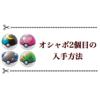 オシャボ(ガンテツボール)2個目の入手方法 【ソードシールド】