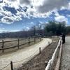 【那須】コスパ最高!入場無料の那須高原 南ヶ丘牧場は絶対オススメ!