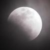 ……げる……今宵は(月)蝕の儀である!スーパーブルーブラッドムーン参上!おしおきよ!