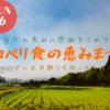 2020.12月6日は、ココペリ食の恵み祭り!