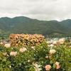 新緑の信州旅行:のどかな温泉地、戸倉上山田温泉