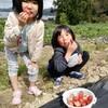 イチゴ狩りと人生
