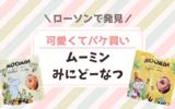 【ローソン】ムーミンのミニドーナツが可愛くてパケ買いしました♪