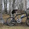 おすすめ6選折りたたみ自転車、ミニベロ。子供にもいいかも!