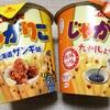 【どっちが美味しい!?】じゃがりこの北海道ザンギ味と九州しょうゆ味を食べ比べてみた!!