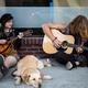 犬と音楽〜前頭葉活性化音楽