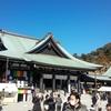 1月法多山参りと掛川花鳥園に行ってきた!猛禽類カワ(・∀・)イイ!!