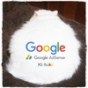 Google AdSenseに合格したはずなのにぃ!