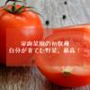 家庭菜園の初収穫、自分で育てた野菜最高!