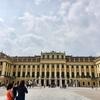 オーストリア ウイーン クリーム色のシェーンブルン宮殿♪