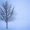 真冬に北海道に一人旅をした話①