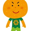 100円ショップ最オススメアイテムは『つぶみオレンジ』だろうよ