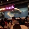 スーパー歌舞伎ワンピース2nd松竹座