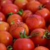 妊娠中の味覚の変化で死ぬほどトマトが好きになった話