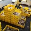 時化後の氷下魚(コマイ)漁
