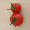 栄養療法の重要性。トマトからの気づき。
