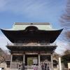 金沢文庫、春、運慶、そして……