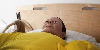 アメリカで大腸内視鏡検査を受けてきた結果・・・体験談