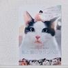 『私と猫のサランヘヨ』