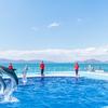 【オープン】四国水族館と周辺施設
