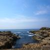 福井市の海岸部を徘徊する