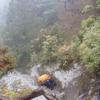 雨の森、雪の森〜屋久島放浪記②