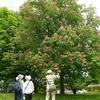 山野に池に 花は春前倒し 八王子・片倉城跡公園