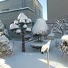 久しぶりに雪が降った