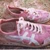 毎日更新 1983年 バックトゥザ 昭和58年10月19日 オーストラリア一周 バイク旅 117日目  23歳 不撓不屈 故障再来 蟻靴食料  ヤマハXS250  ワーキングホリデー ワーホリ  タイムスリップブログ シンクロ 終活