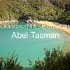 【ニュージーランド 旅行】ネルソンに行ったら絶対行ってほしい!Abel Tasmanってどんなところ?