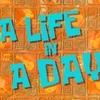 スポンジボブ 「今を生きよう!」「日焼けにご用心」
