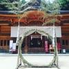 穂高神社のおみくじ