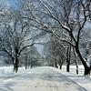 寒いので吉幾三氏の曲を集めてみました。