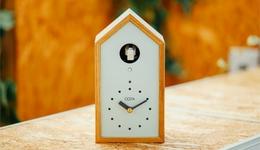 誰がために鳩は鳴く—— IoT鳩時計「OQTA」のポッポ♪で分かった便利さの先