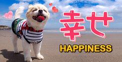 「幸せ」に関する英語表現を学ぼう!