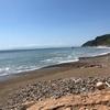 淡路島へ化石採集に行ってきました #化石 #白亜紀 #アンモナイト #淡路島 #アウトドア