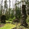 LavaTree State Monument 溶岩樹形州立公園