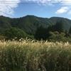 やっぱり今日もひきこもる私(314)東京のひきこもり、北海道へ向かう<3>奥羽のみち