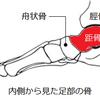 【横浜】ベリーダンスを踊るための身体の使い方と基礎祭り オープンクラス日誌