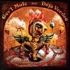 #0165) DEJA VOODOO / GOV'T MULE 【2004年リリース】